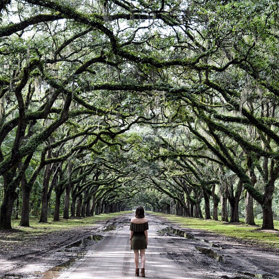 Best Places To Vacation In March In Teh Southern Us: THE MOST PHOTO WORTHY SPOTS IN SAVANNAH