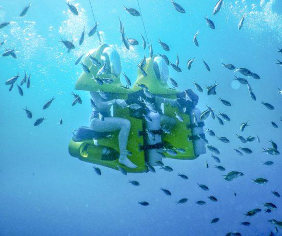 Aquafari Curaçao