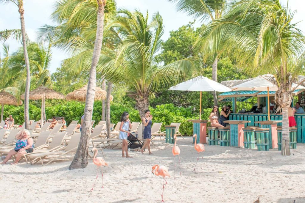 A view of Mangrove Beach Bar and the chaise lounge chairs on Flamingo Beach Aruba