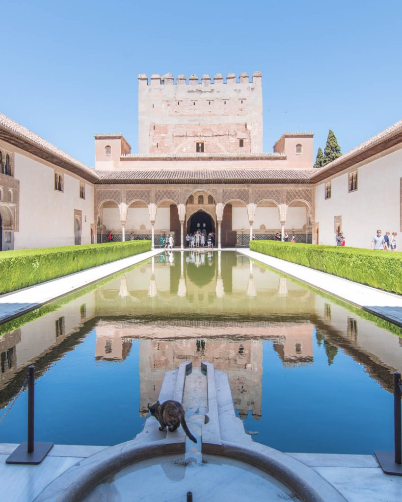 Facade of the Alhambra with cat perching on pool in front of reflection pool