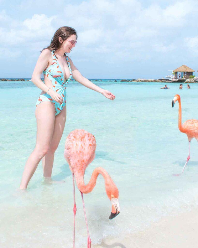 Woman feeding two flamingos on Flamingo Beach