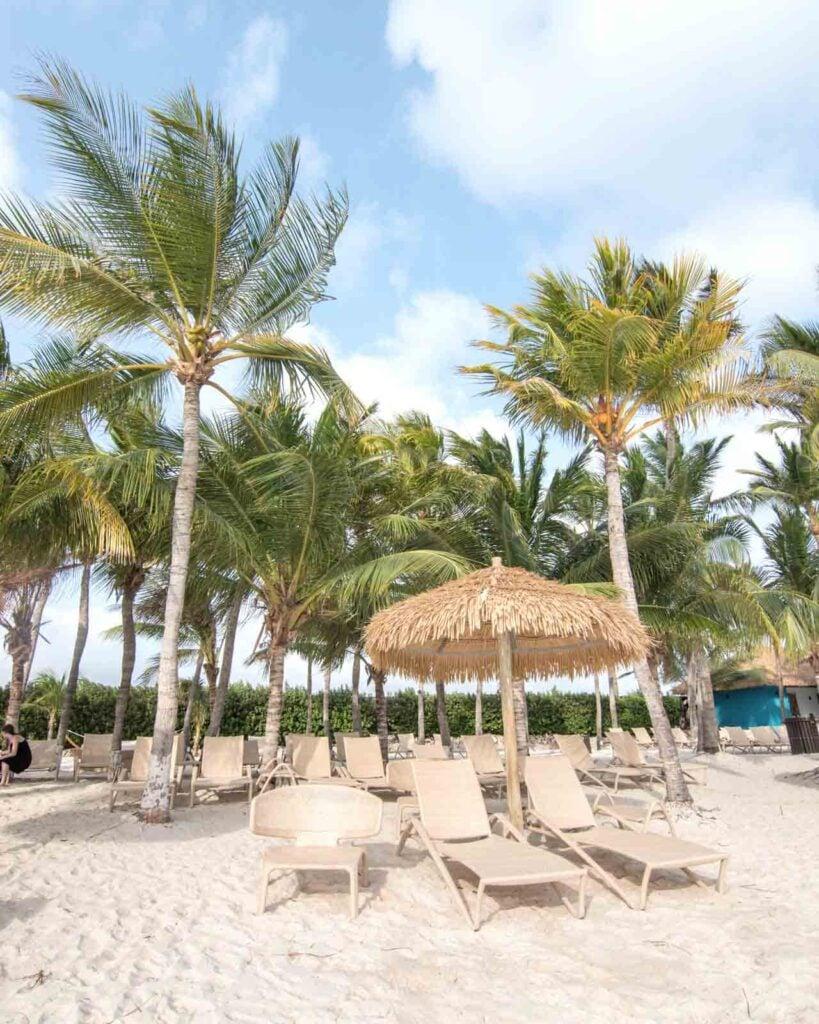 Chaise lounge chairs and palm trees on Iguana Beach, Renaissance Private Island, Aruba