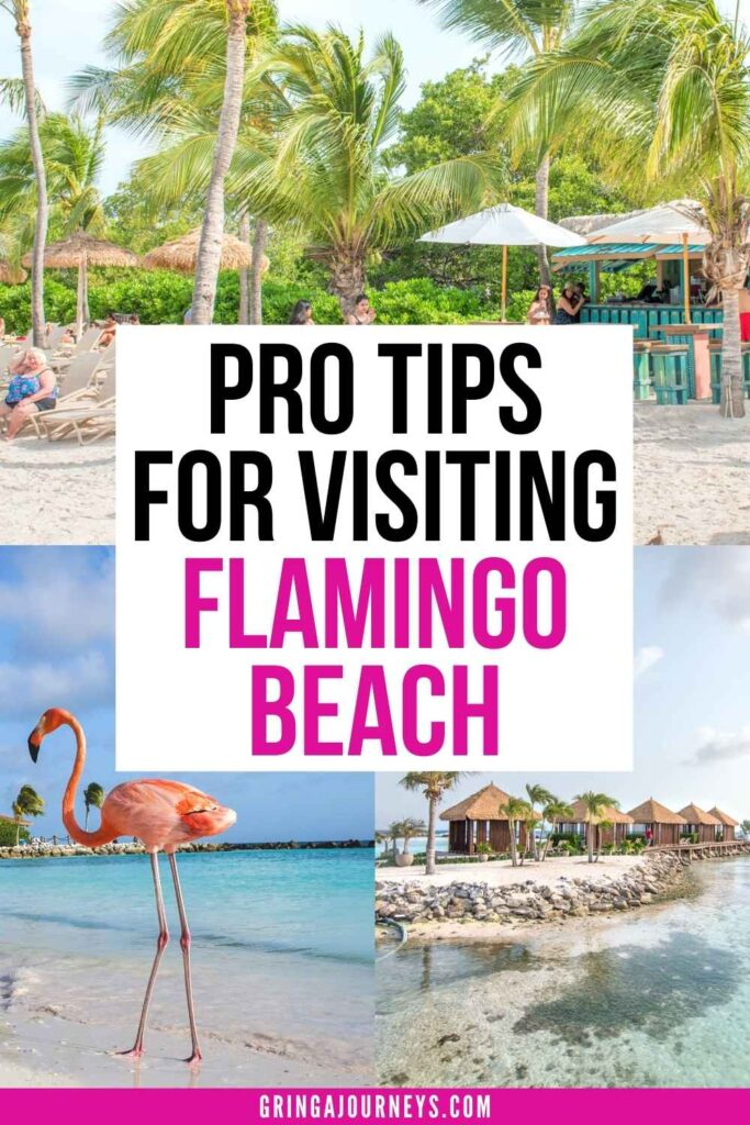 Are you wondering how to see the flamingos in Aruba? You can only find them in one place: Renaissance Aruba's Private Island! Learn how to visit, where to secure island day passes, what you can do on the island, how to take pictures with the flamingos, and more. | flamingo beach aruba hotel | renaissance island aruba | flamingo beach renaissance island | flamingo island aruba | renaissance island aruba day pass | aruba beach with flamingos | aruba pink flamingos