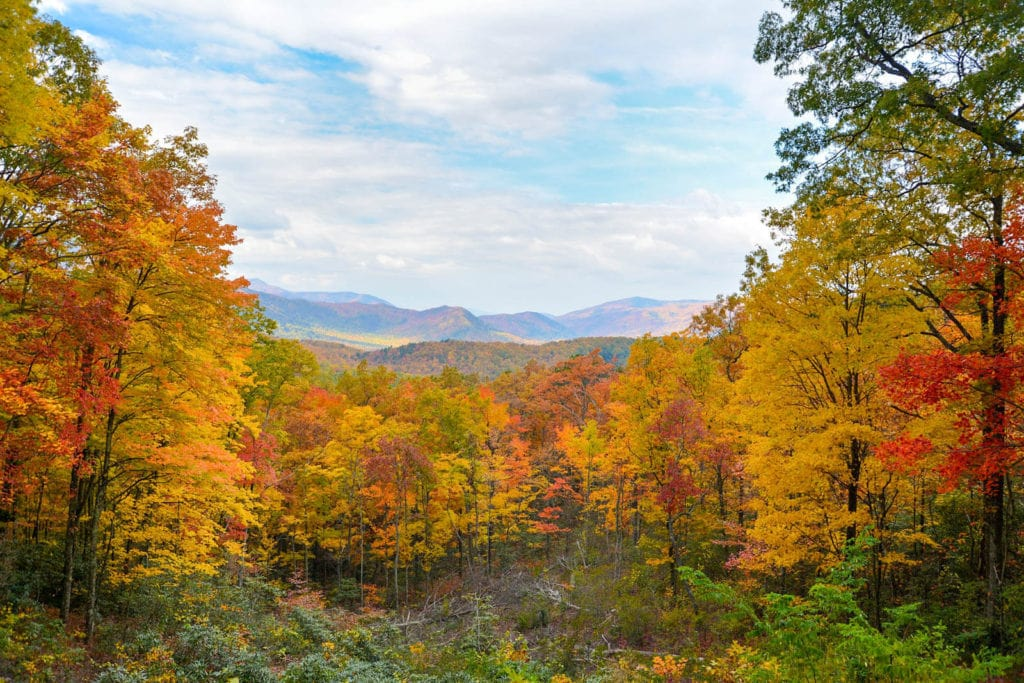 View of fall foliage in Gatlinburg, Tennessee