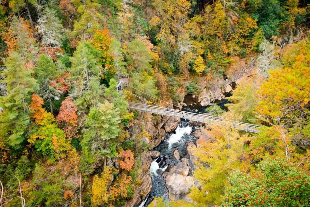 View of Tallulah Gorge from above, with fall foliage surrounding