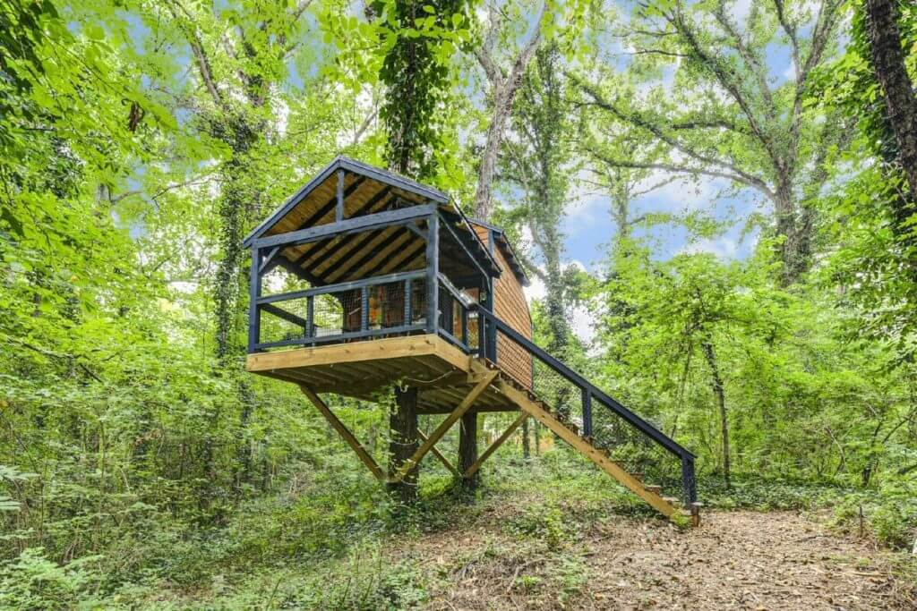 Front view of Oasis Treehouse in Canton, GA, showing staircase, entrance, and surrounding forest