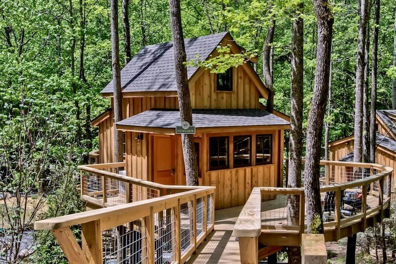 View of The Hemlock in Treehouse Grove at Norton Creek, surrounded by trees and a wraparound porch