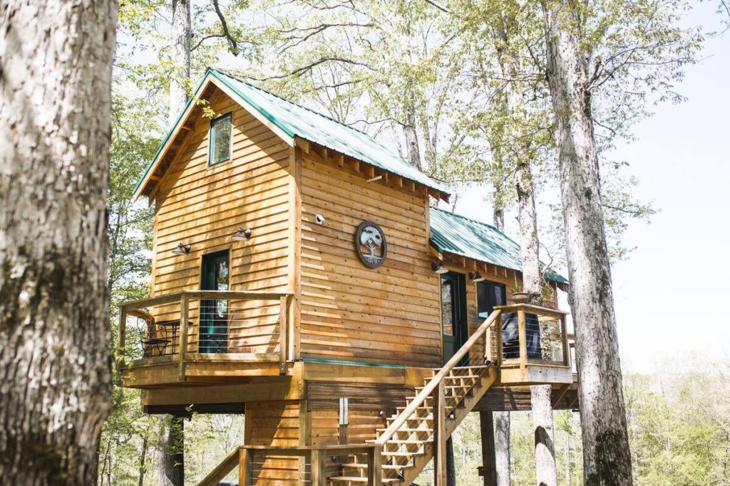 Photo of Serenity House Treehouse surrounded by trees and the stairs to reach the top