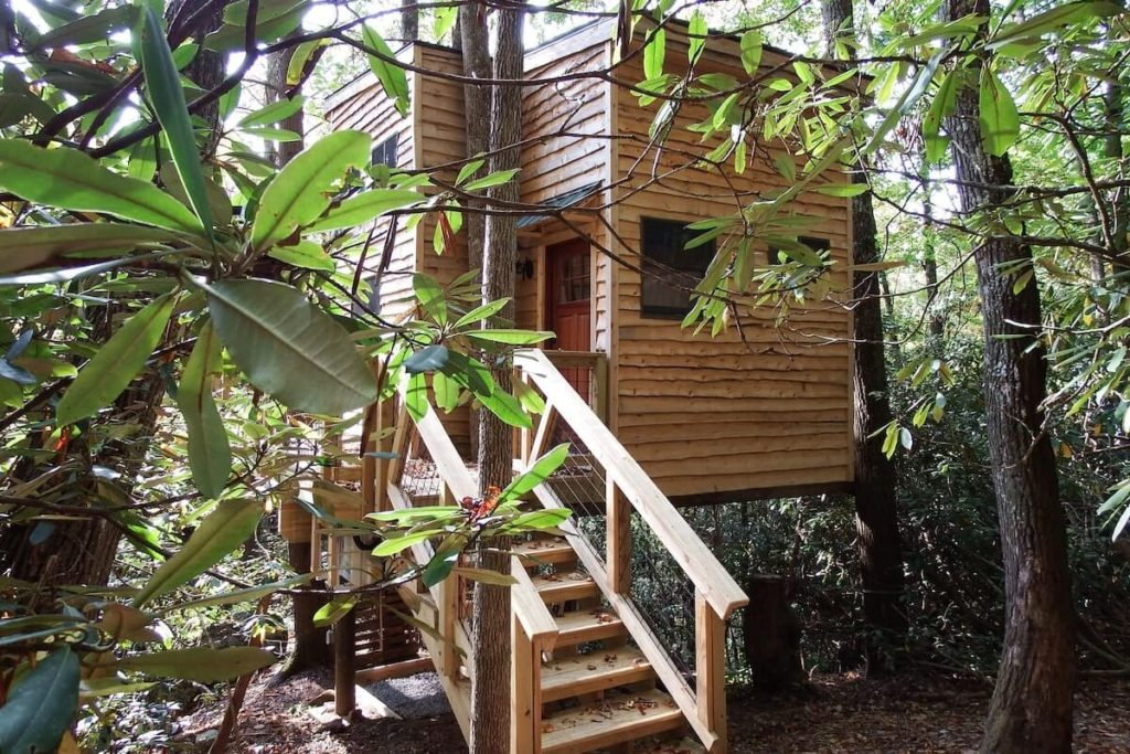 A view of Tree House at Halo Hammocks in Elizabethton, TN, surrounded by trees