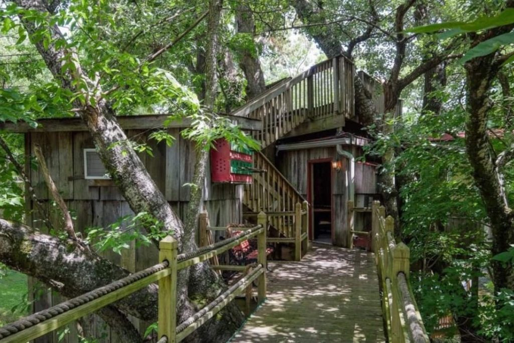 View of the walkway to this unique treehouse and the entrance