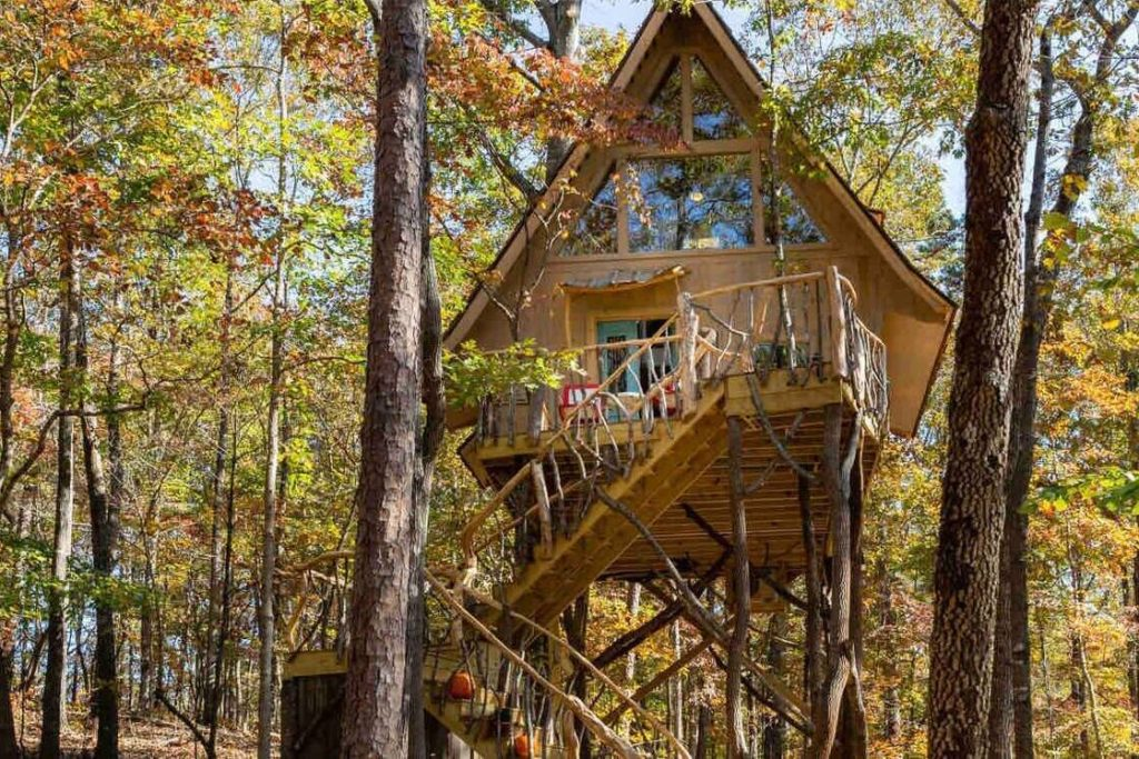 Photo of Bed+Bough Treehouse in Dahlonega in the fall