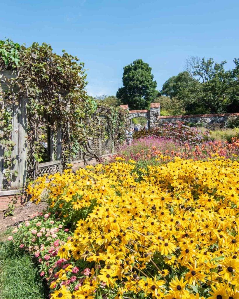 The Biltmore Gardens in full bloom