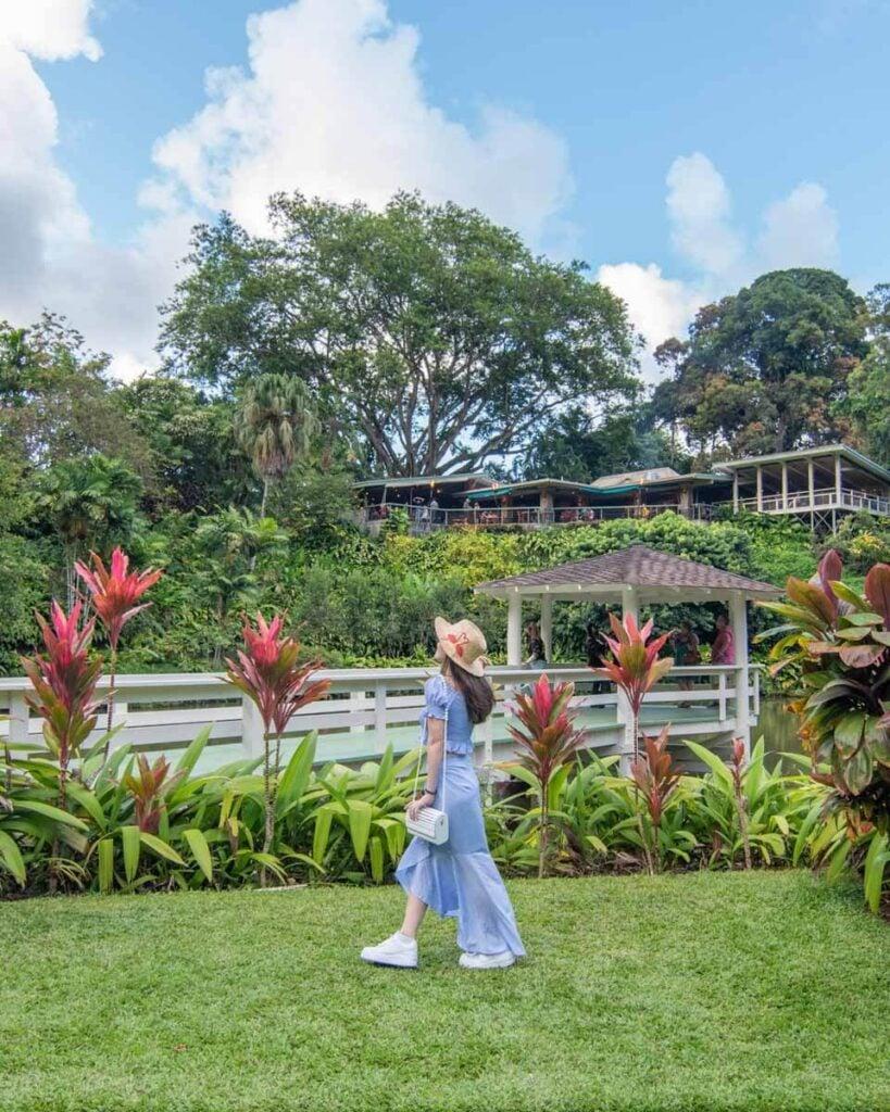Woman walking in front of gazebo at Haiku Gardens with Haleiwa Joe's in the background