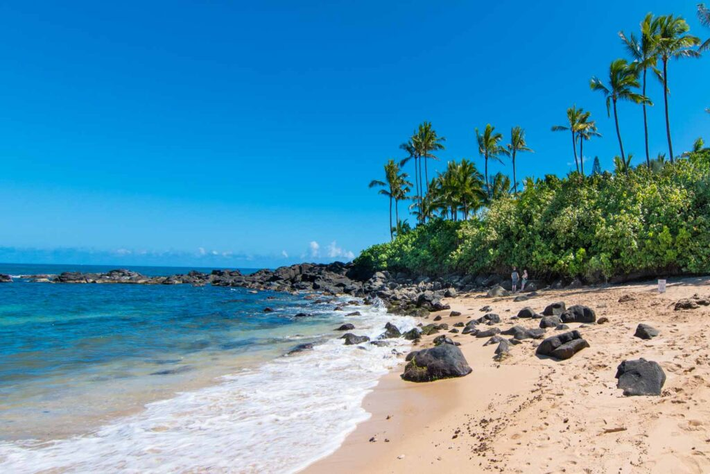 Photo of Laniakea Beach, showing palm trees, rocks, and clear blue water.