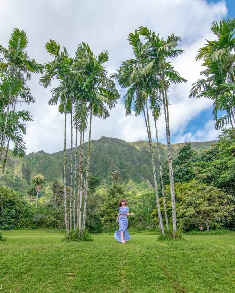 Woman standing between tall palm trees in Ho'omaluhia Botanical Garden in Oahu