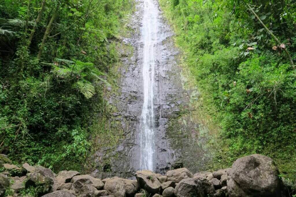 A view of the waterfall on Manoa Falls trail.