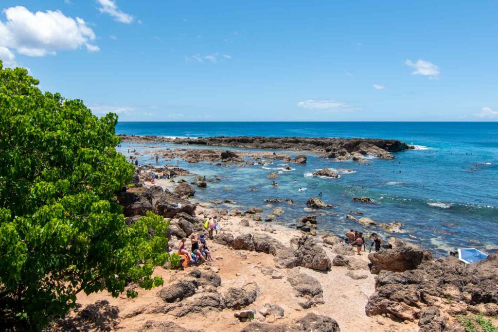 View of Shark's Cove on the North Shore, showing people snorkeling and swimming around the rocks